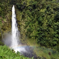 Hawaiian eco adventure - shore excursions group
